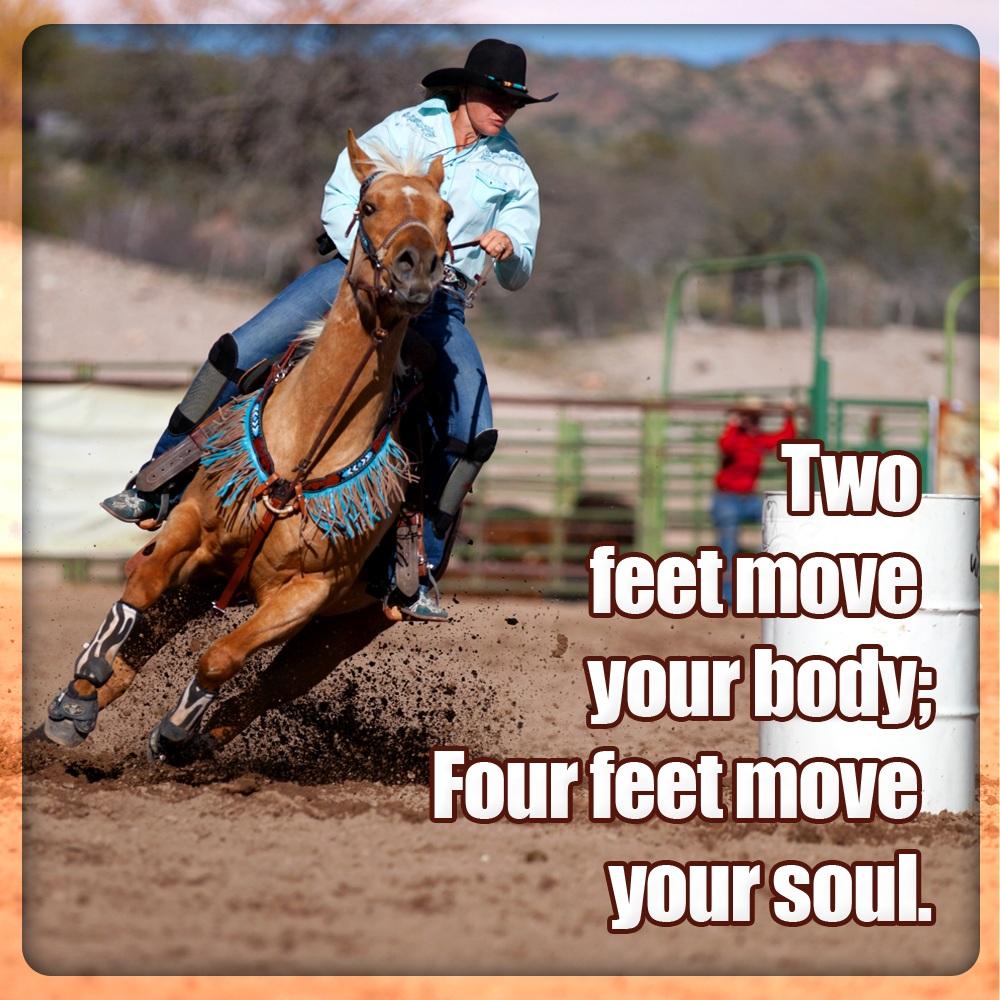 Horse Racing Memes Wwwtopsimagescom
